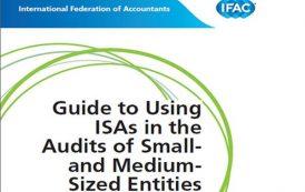 رهنمودی برای استفاده از استانداردهای بین المللی حسابرسی در حسابرسیهای بنگاه های کوچک ومتوسط
